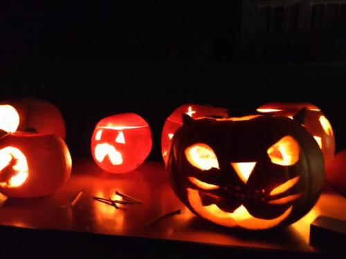 Fireworks and Pumpkins Nov 2015